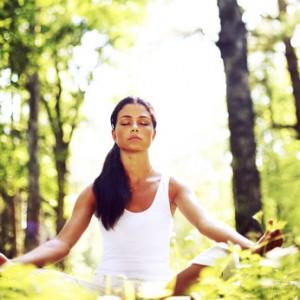 Meditation in Woodland